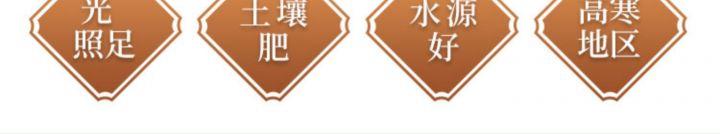 【5斤】纯荞麦面粉黑麦面粉 -9